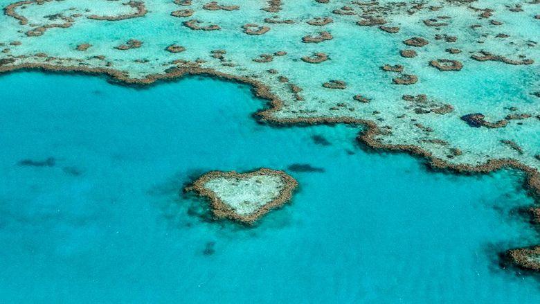 Heart Reef in the Great Barrier Reef in Queensland, Australia.