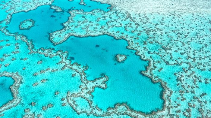 Aerial view of Great Barrier Reef in Whitsundays Queensland Australia, famous love heart reef.