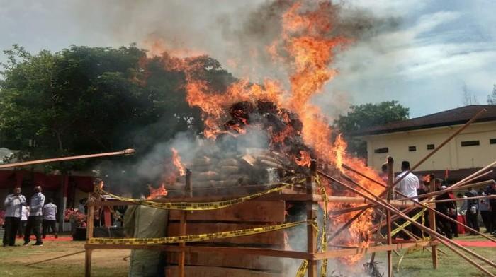 Polda Aceh memusnahkan barang bukti narkoba.