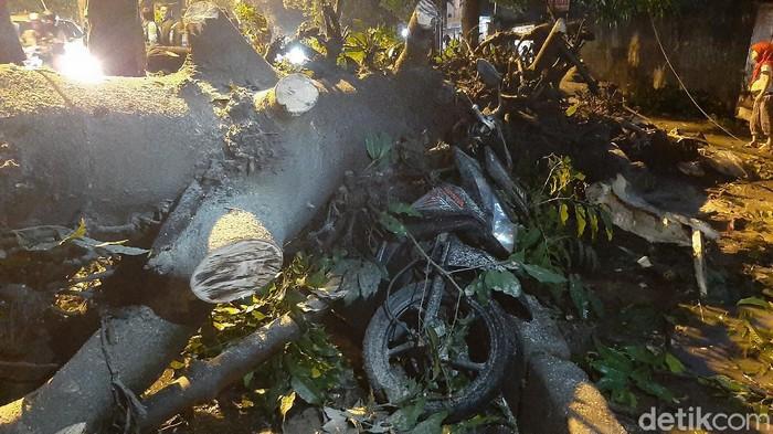 Bencana pohon tumbang terjadi di Jalan Raya Abdullah Bin Nuh, Kecamatan Bogor Barat, Kota Bogor, Rabu (23/9/2020). Tidak ada kirban jiwa dalam kejadian tersebut, namun sebanyak 8 motor rusak karena tertimpa pohon yang tumbang.