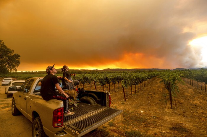 FILE - In this Aug. 20, 2020, file photo, Thomas Henney, right, and Charles Chavira watch a plume spread over Healdsburg, Calif., as the LNU Lightning Complex fires burn. Smoke from the West Coast wildfires has tainted grapes in some of the nation's most celebrated wine regions. The resulting ashy flavor could spell disaster for the 2020 vintage. (AP Photo/Noah Berger, File)