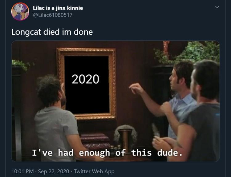 Meme mengharukan mengenang kepergian Longcat