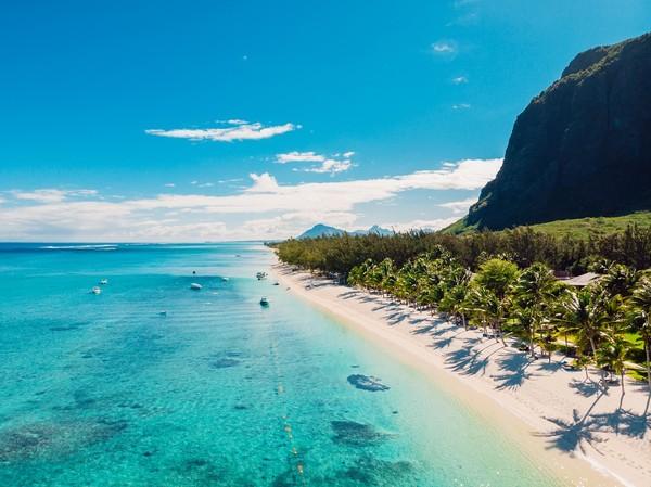 Dari perkebunan tebu, Mauritius berhasil meningkatkan perekonomiannya dan menjadi negara merdeka.