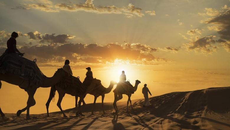 Turis berparade naik unta di Abi Dhabi Empty Quarter Desert