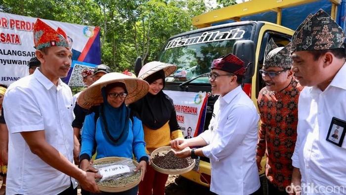 banyuwangi ekspor kopi