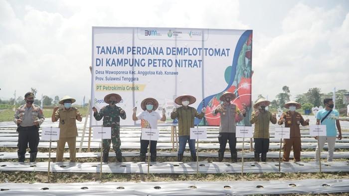 Jajaran manajemen Petrokimia Gresik bersama Pemda Konawe melakukan tanam perdana di Kampung Petro Nitrat