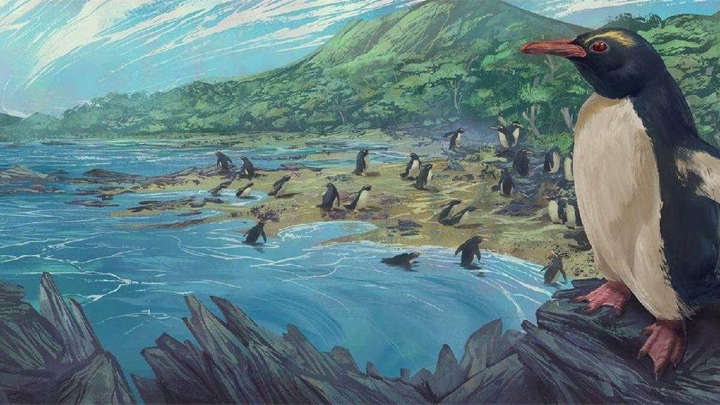 Nenek Moyang Penguin Tinggal di Benua yang Hilang