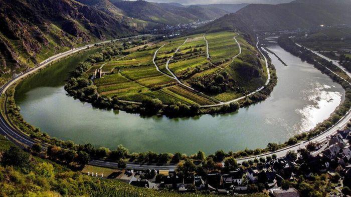 Salah satu kebun anggur tercuram di dunia yaitu Kebun Anggur Calmont di Jerman. Kebun anggur ini memiliki kemiringan 65 derajat dengan pemandangan yang indah.