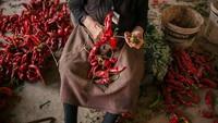 Proses menjemur paprika di desa ini cukup unik. Benang panjang digunakan warga untuk menyusun paprika-paprika tersebut setelah kemudian akan dijemur di pekarangan rumah mereka.