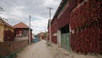 Di saat warga tengah menjemur paprika-peprika tersebut di pekarangan rumah mereka, bangunan luar rumah mereka pun tampak terlihat berubah warna menjadi merah. Pemandangan tersebut salah satunya membuat desa itu dijuluki desa paprika atau Ibu Kota paprika di Serbia.