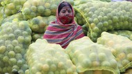 Corona di India Tembus 6 Juta Kasus