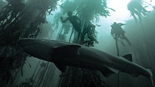 Dia dikenal sebagai Tanjung Badai. Saat orang-orang takut pada predator, dia justru takut terlempar ke batu karena gelombang besar.