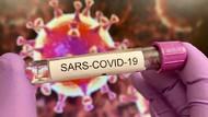 Tambah 5.560, Kasus COVID-19 di RI 28 Februari Jadi 1.334.634