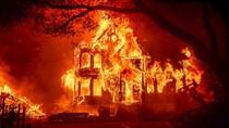 Ganasnya Api Silverado, 100 Ribu Warga California Dievakuasi