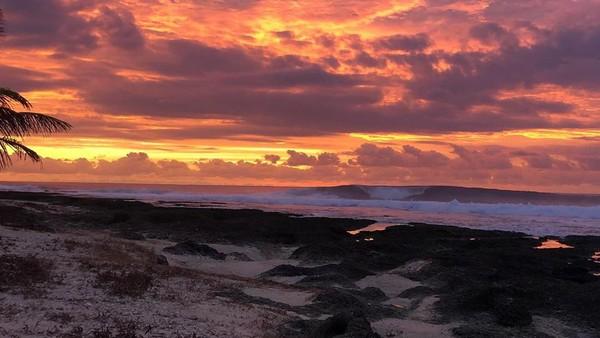 Pulau Asu nan mempesona di Nias juga tak kalah indah. Ada berbagai terumbu karang yang beraneka warna. Pesona sunsetnya pun sangat memukau. (Asu Camp/instagram)