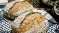 Ratusan Kali Gagal Bikin Roti Sourdough Tak Bikin Chef Vindex Kapok