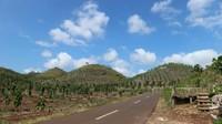 Perbukitan hijau di Gunungkidul ini kerap dikatakan Bukit Teletubies. Alamnya yang indah dengan latar birunya langit menjadi spot foto bagi wisatawan. (Aisyah Pretty R/dtravelers)