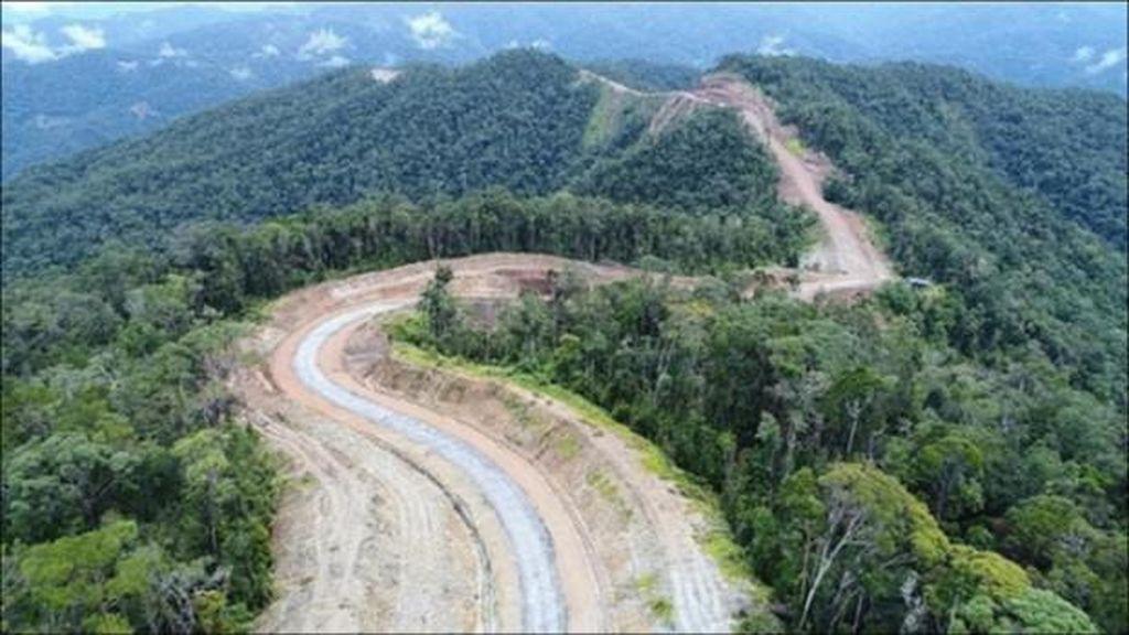 Hati-hati Berkendara di Papua, Tabrak Babi Gantinya Bisa Setara Motor Honda PCX