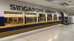 Singapore Airlines Tak Jadi Terbang ke Antah Berantah, Ini Gantinya