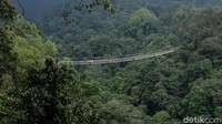 Suspension bridge ini menjadi salah satu objek wisata yang ikonik di Sukabumi,.