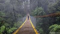 Jembatan Gantung Situ Gunung telah sukses menarik minat banyak wisatawan dari berbagai daerah.