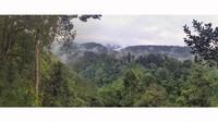 Wisatawan menikmati suasana dan keindahan jembatan gantung (suspension bridge) Taman Nasional Gunung Gede Pangrango (TNGGP) di Sukabumi, Jawa Barat, akhir pekan lalu (27/9/2020).