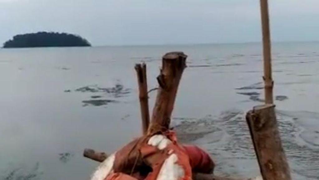 Heboh Air Laut di Pantai Jepara Surut, Begini Penjelasan BPBD