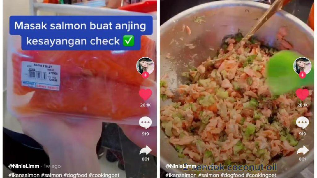 Bikin Netizen Ngiler, Wanita Ini Masak Salmon Panggang Buat Anjingnya