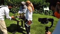Begini Potret Wisata Virtual di Kebun Raya Bogor
