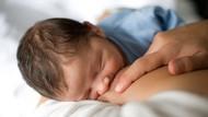 2 Perusahaan Ingin Ciptakan ASI di Laboratorium, Amankah Bagi Bayi?