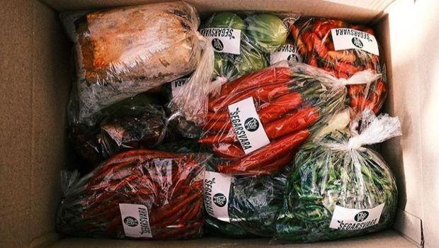 Bos Sound System Banting Setir Jual Sayur Online