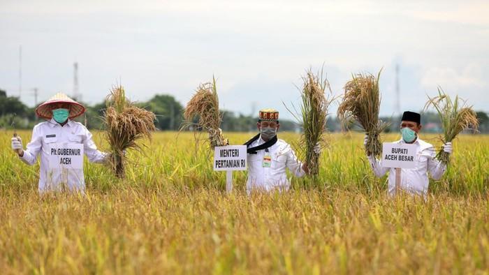 Mentan Syahrul Yasin Limpo di Aceh