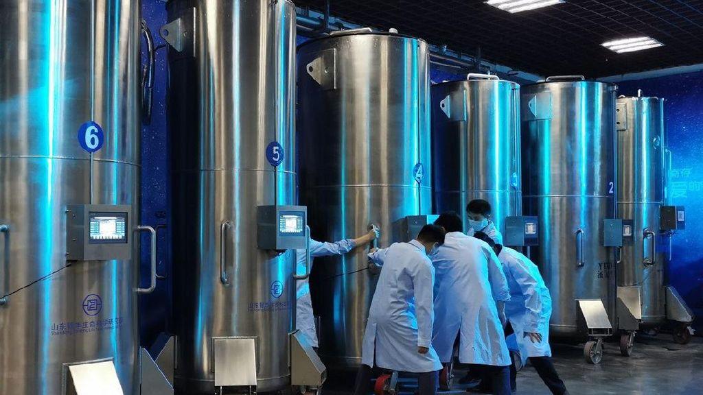 Laboratorium di China Ingin Bangkitkan Orang Mati