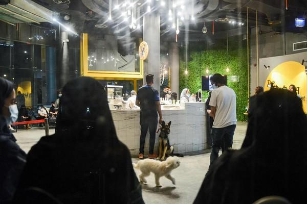 Sang pemilik kafe yang berdarah Kuwait, Dalal Ahmedmengaku terinspirasi akan tren yang unik itu, sejak kunjungan terakhirnya ke Arab Saudi. Ia pun akhirnya membuat Barking Lot.