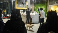 Kini Hadir Kafe Anjing Pertama di Arab Saudi