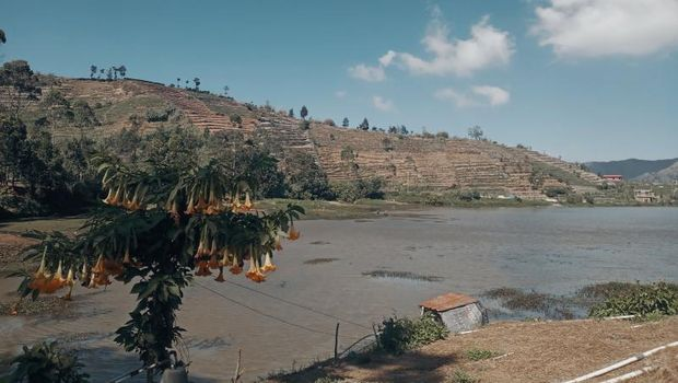 Bukit di Wonosobo.