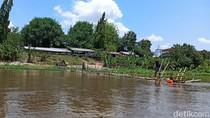 Viral Buaya di Sungai Brantas Kediri Dikaitkan dengan Mistis, Seperti Apa?