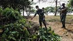 TNI AL Gerebek Sampah dan Lumpur di Waduk Pluit