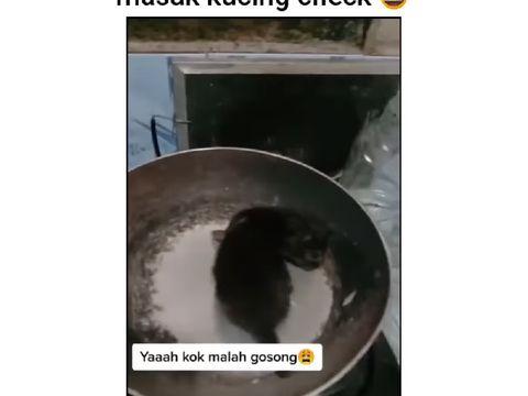 Bikin Video Candaan Masak Kucing, Netizen Ramai Menghujat