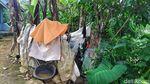 Ini Kondisi Rumah Panggung Meli Nuryani Sang Juara LIDA