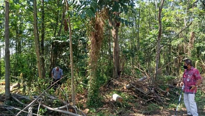 Tim BPCB Jateng mengecek temuan batu diduga candi di Desa Mranggen Jatinom, Klaten, Jumat (2/10/2020). Selain batu besar diduga candi, ada pula Yoni dan dorpel pintu candi.