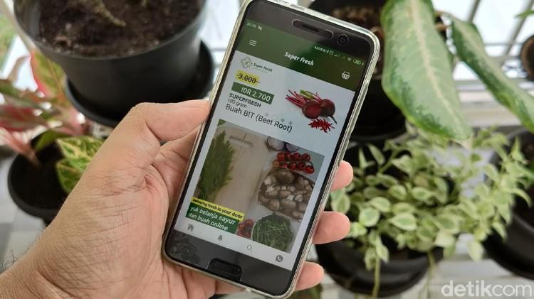 Jualan Online Sayur - Blitar