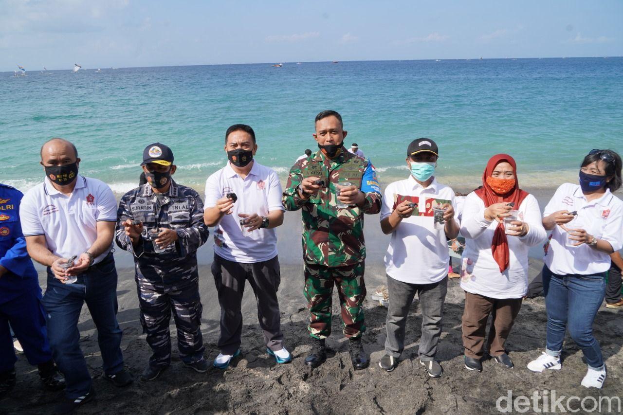 Peringati HUT ke-75, TNI menanam 750 terumbu karang dan melepas 200 ekor tukik (anak penyu) di Senggigi, Lombok. Tujuannya untuk menjaga ekosistem laut.