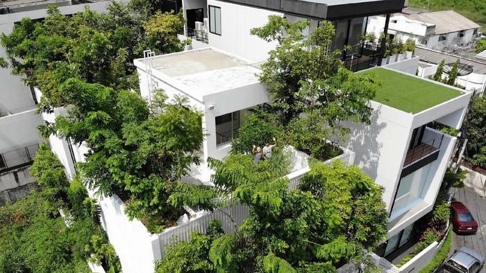 Rumah ini secara keseluruhan luasnya hanya 300 meter per segi. Tapi di dalamnya ditanam ratusan pohon. Nggak percaya? cek foto-fotonya berikut.