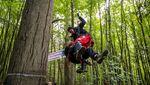 Aksi Aktivis Bikin Rumah Pohon Untuk Protes Perluasan Jalan