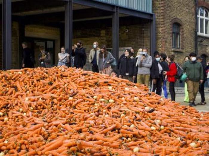 Karya Seni dari 32 ribu kilogram wortel di Inggris
