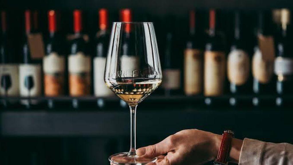 China Ngamuk! Wine Asal Australia Dipatok Tarif hingga 212%