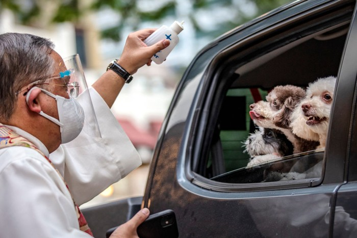 MANILA, PHILIPPINES - OCTOBER 04: A woman aboard a car holds up her pet birds as they wait to be blessed by a Catholic priest via drive-in to prevent the spread of COVID-19, during a pet blessing at Eastwood Mall to mark World Animal Day on October 4, 2020 in Quezon city, Metro Manila, Philippines. World Animal Day is an international day of action for animal rights and welfare celebrated annually on October 4, the feast day of Francis of Assisi, the patron saint of animals. Traditional pet blessing at churches were skipped as religious gatherings remain prohibited in the Philippines due to the pandemic. (Photo by Ezra Acayan/Getty Images)