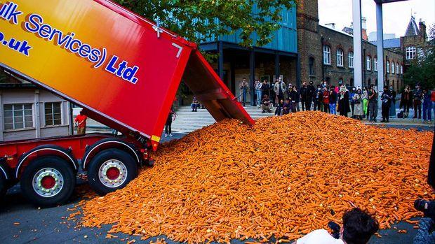 Wortel 31 ton dibuang demi karya seni
