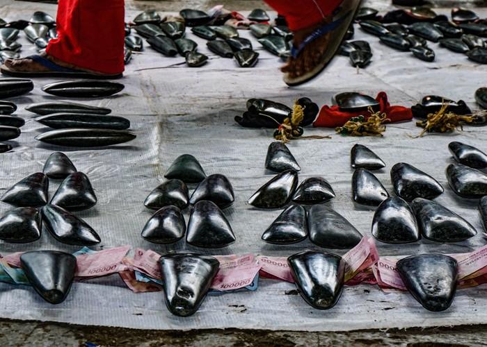 Keluarga Suku Olua (pihak laki-laki) menyiapkan uang untuk dibayar bersamaan dengan tomako batu kepada Suku Mebri (pihak perempuan) di Kampung Yoka, Kota Jayapura, Papua.
